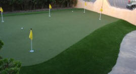 budget backyard putting green